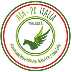 cropped-prova-logo-bandiera.jpg