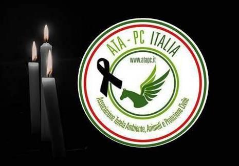 Cordoglio di ATA-PC Italia per la scomparsa della mamma del socio Niceta Curlante